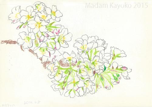20150402oshima