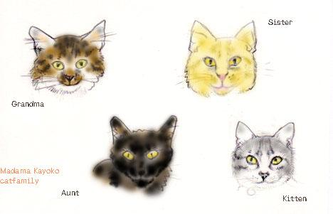catfamilyen